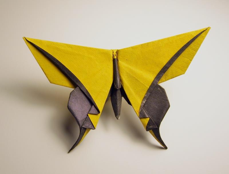 Vog butterfly folded by giangdinh
